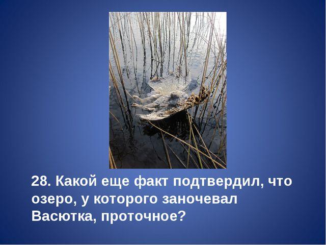 28. Какой еще факт подтвердил, что озеро, у которого заночевал Васютка, прото...