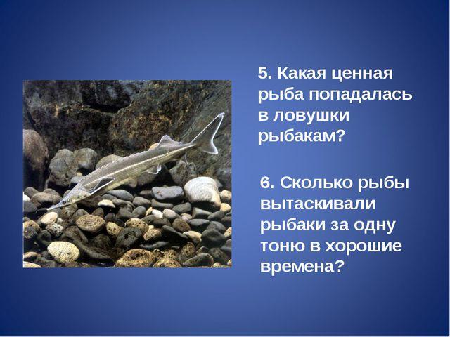 5. Какая ценная рыба попадалась в ловушки рыбакам? 6. Сколько рыбы вытаскивал...