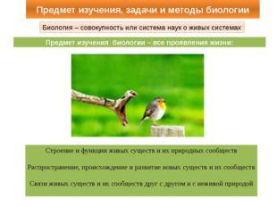 Предмет изучения, задачи и методы биологии Биология – совокупность или систем
