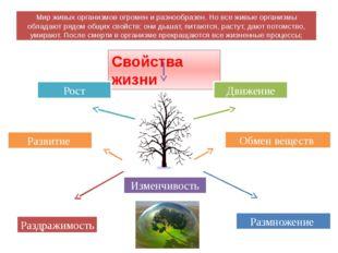 Свойства жизни Изменчивость Рост Развитие Обмен веществ Размножение Раздражим