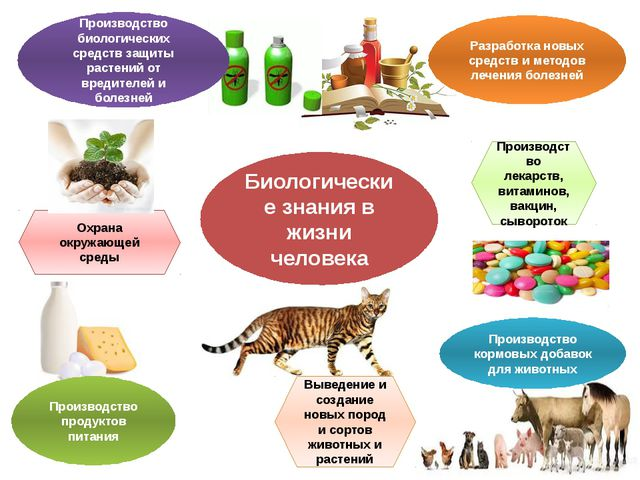 Биологические знания в жизни человека Производство биологических средств защи...