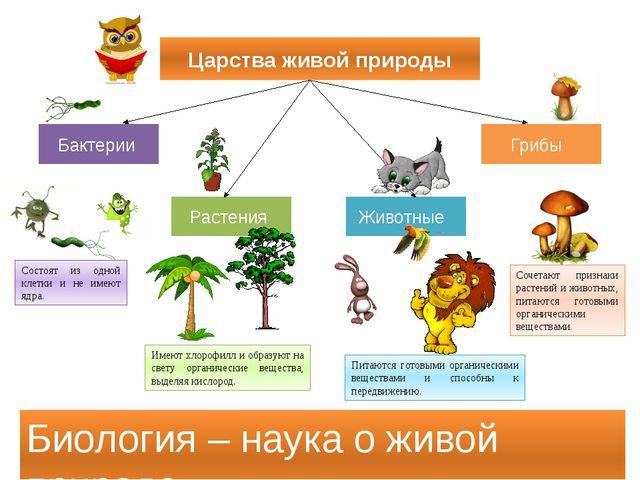Царства живой природы Бактерии Грибы Растения Животные Биология – наука о жив...