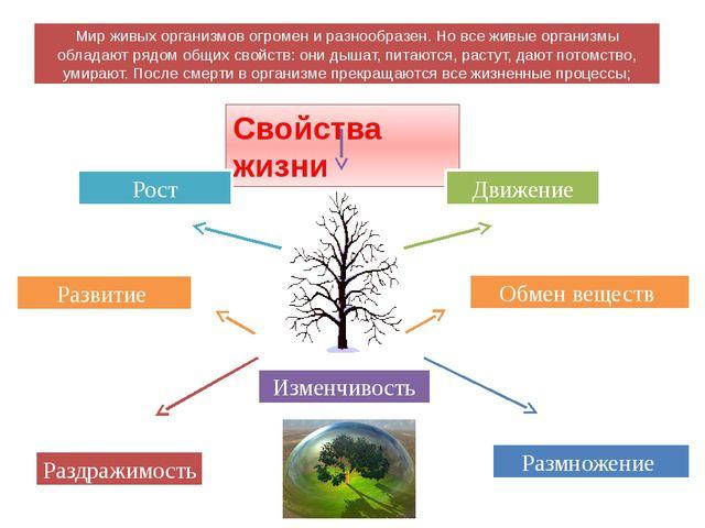 Свойства жизни Изменчивость Рост Развитие Обмен веществ Размножение Раздражим...