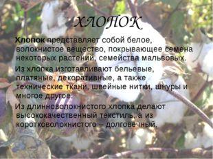 ХЛОПОК Хлопок представляет собой белое, волокнистое вещество, покрывающее сем