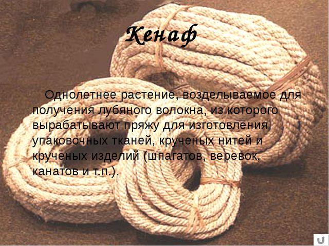 Кенаф Однолетнее растение, возделываемое для получения лубяного волокна, из к...