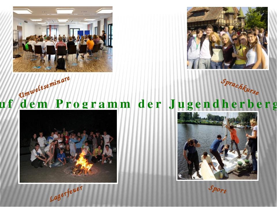 Auf dem Programm der Jugendherbergen Sport Sprachkurse Umweltseminare Lagerfe...