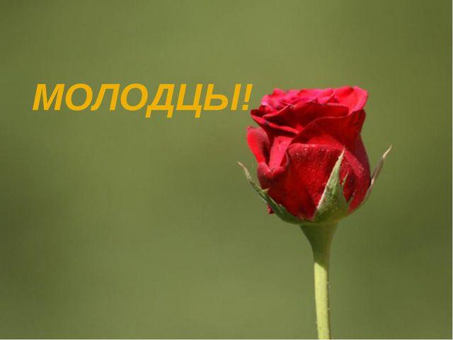 МОЛОДЦЫ! Page *