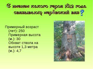 Примерный возраст (лет): 250 Примерная высота (м.): 30 Обхват ствола на высот