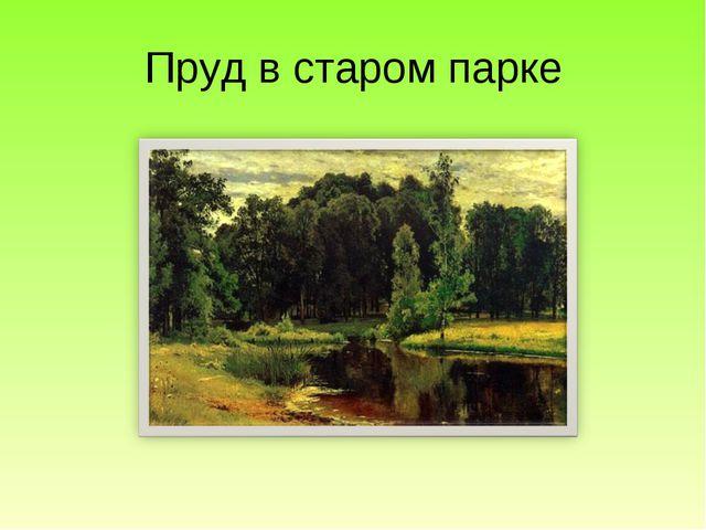 Пруд в старом парке