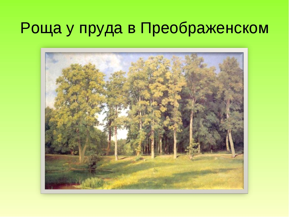 Роща у пруда в Преображенском