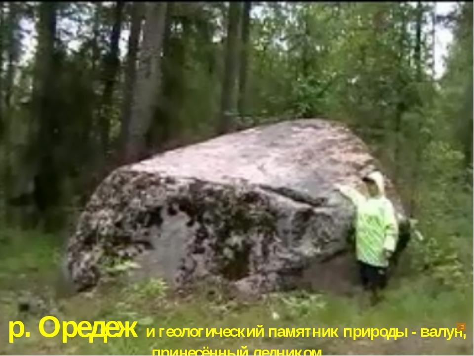 р. Оредеж и геологический памятник природы - валун, принесённый ледником
