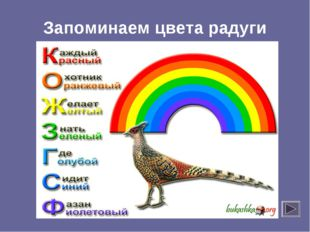 Запоминаем цвета радуги