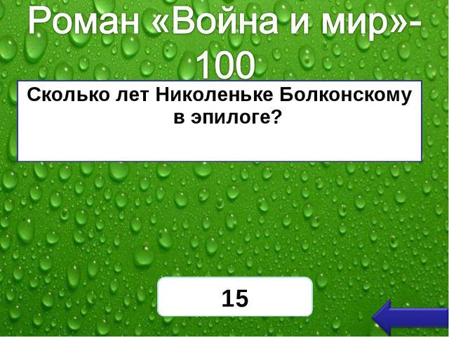Сколько лет Николеньке Болконскому в эпилоге? 15