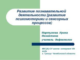 Развитие познавательной деятельности (развитие психомоторики и сенсорных проц