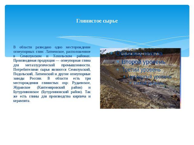 Глинистое сырье В области разведано одно месторождение огнеупорных глин: Латн...