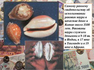 Самому раннему свидетельству об использовании раковин каури в качестве денег