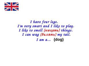 I have four legs. I'm very smart and I like to play. I like to smell (нюхат