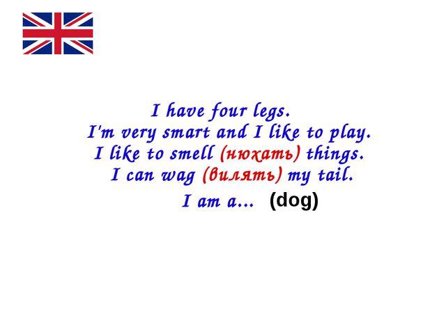 I have four legs. I'm very smart and I like to play. I like to smell (нюхат...