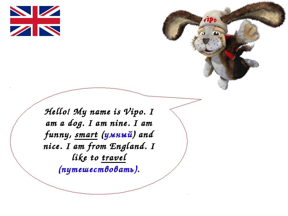 Hello! My name is Vipo. I am a dog. I am nine. I am funny, smart (умный) and...