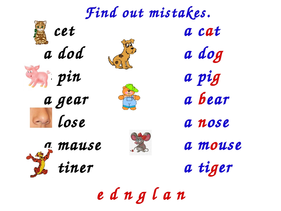Find out mistakes. a cet a dod a pin a gear a lose a mause a tiner a cat a do...