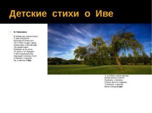 Детские стихи о Иве Ж. Синючкова В поймах рек, вблизи болот, У озёр она растё