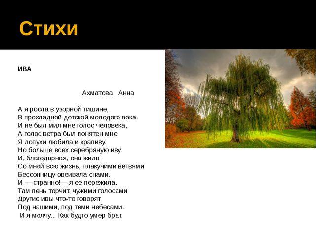 Стихи ИВА  Ахматова Анна А я росла...