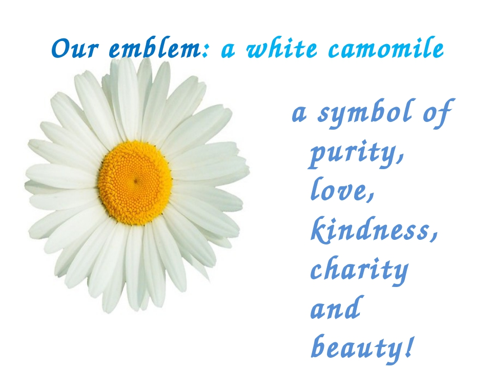 Our emblem: a white camomile a symbol of purity, love, kindness, charity and...