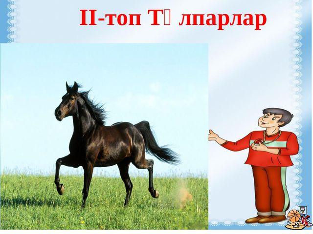 II-топ Тұлпарлар