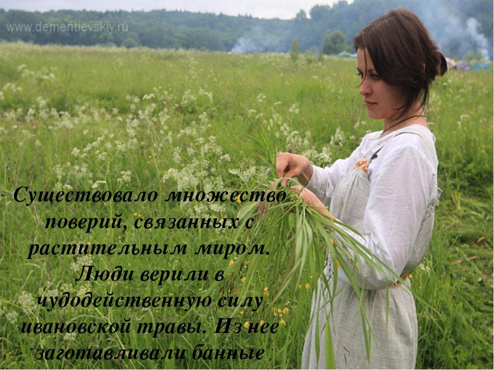 Существовало множество поверий, связанных с растительным миром. Люди верили в...