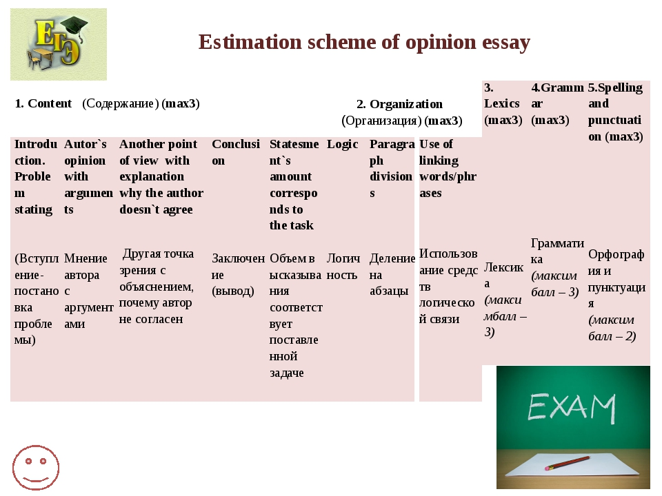 opinon essay Look at the essay and do the exercises to improve your writing skills.