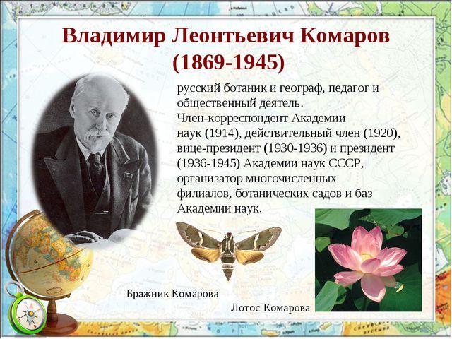 Владимир Леонтьевич Комаров (1869-1945) русскийботаникигеограф, педагог и...