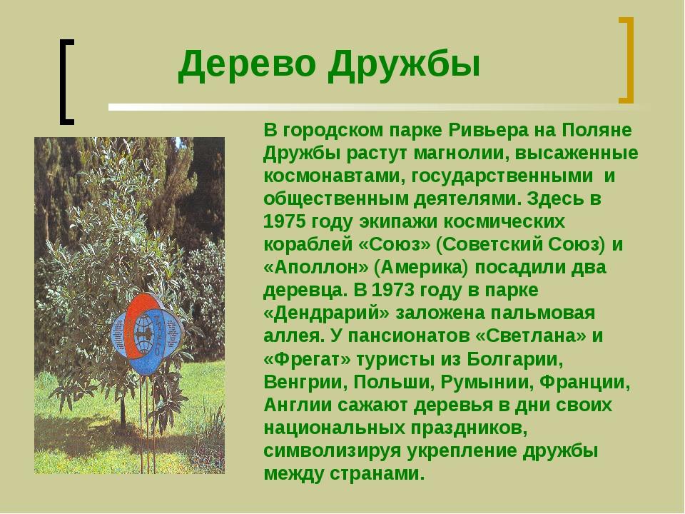 Дерево Дружбы В городском парке Ривьера на Поляне Дружбы растут магнолии, выс...