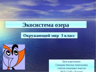 Экосистема озера Окружающий мир 3 класс Урок подготовила Суворова Наталья Ана