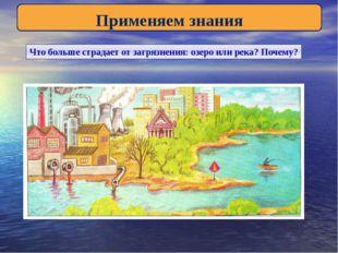 Применяем знания Что больше страдает от загрязнения: озеро или река? Почему?