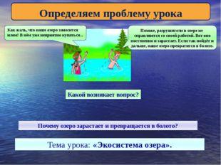 Определяем проблему урока Как жаль, что наше озеро заносится илом! В нём уже