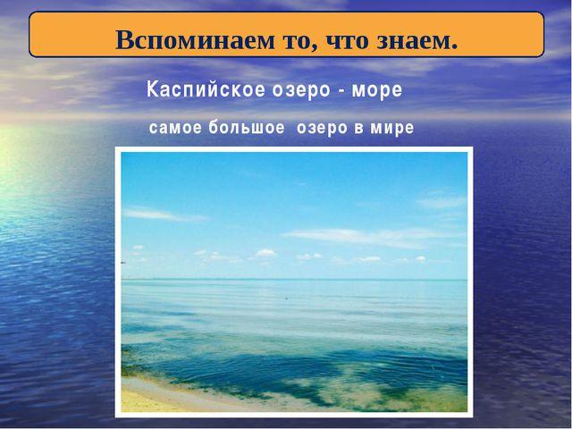 Вспоминаем то, что знаем. Каспийское озеро - море самое большое озеро в мире