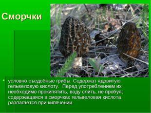 Сморчки условно съедобные грибы. Содержат ядовитую гельвеловую кислоту. Перед