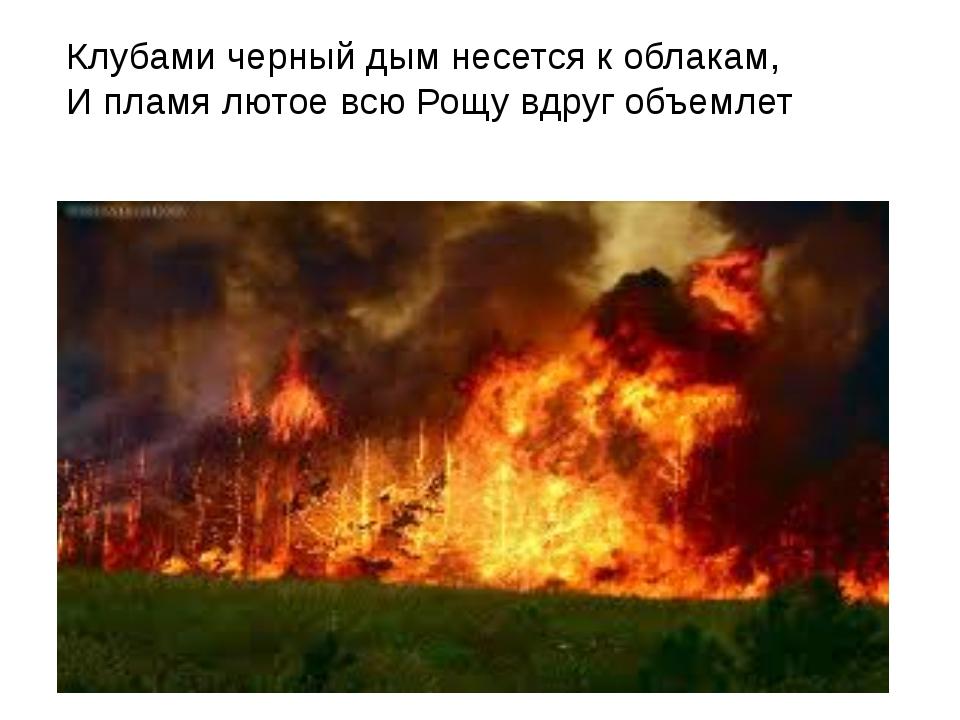 Клубами черный дым несется к облакам, И пламя лютое всю Рощу вдруг объемлет