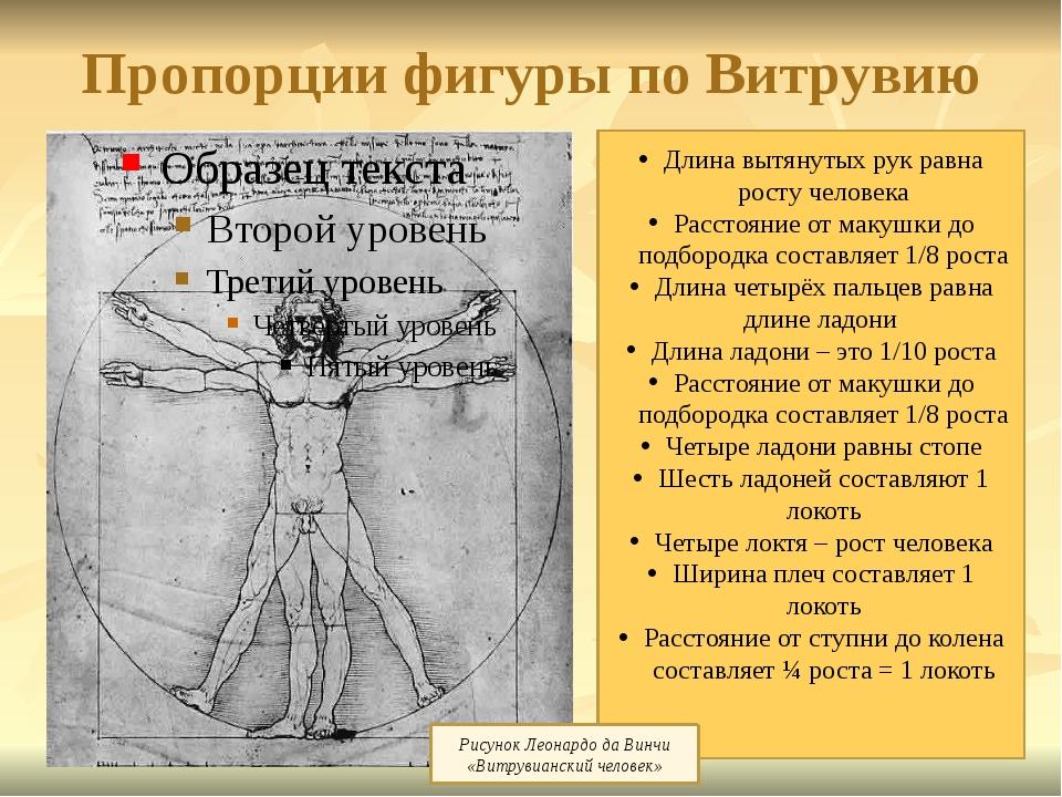 Пропорции фигуры по Витрувию Длина вытянутых рук равна росту человека Расстоя...