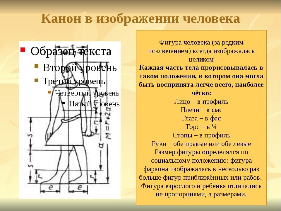 Канон в изображении человека Фигура человека (за редким исключением) всегда и...
