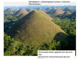 Заповедник «Шоколадные холмы» о.Бохоль (Филиппины) Используя макет дерева (ег
