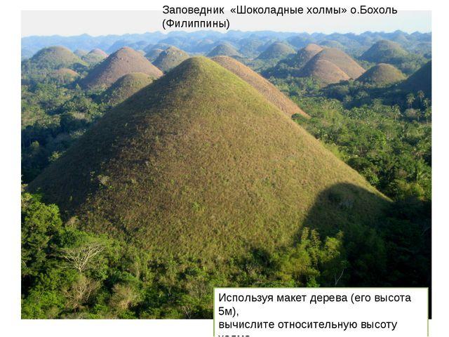 Заповедник «Шоколадные холмы» о.Бохоль (Филиппины) Используя макет дерева (ег...