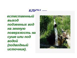 Родни́к, исто́чник, ключ— естественный выход подземных вод на земную поверх