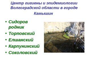 Центр гигиены и эпидемиологии Волгоградской области в городе Камышин Сидоров