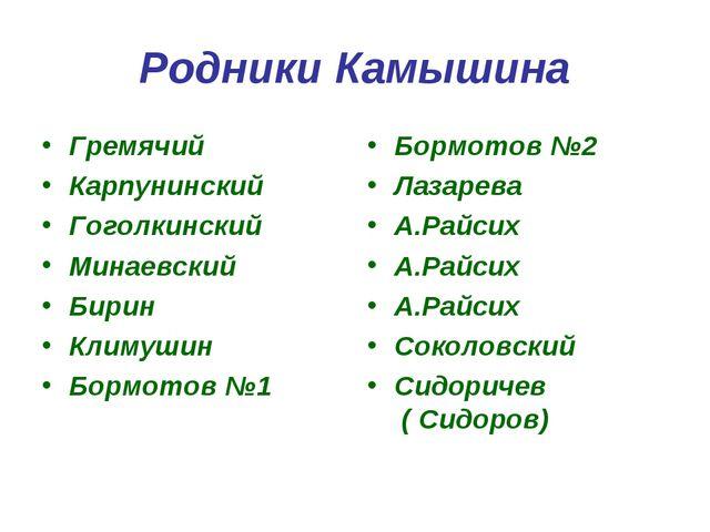 Родники Камышина Гремячий Карпунинский Гоголкинский Минаевский Бирин Климушин...