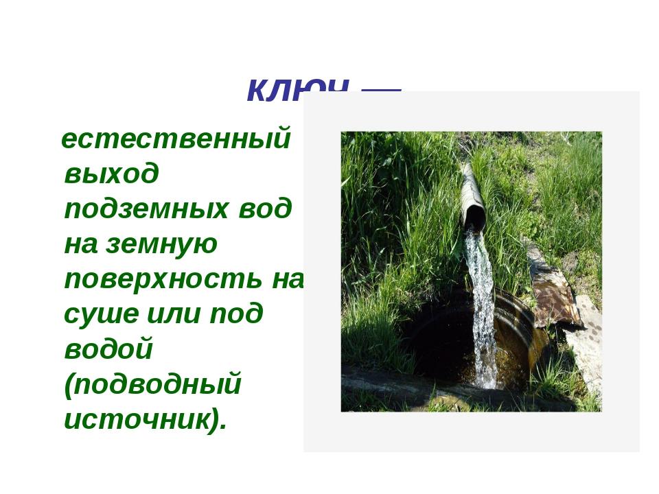 Родни́к, исто́чник, ключ— естественный выход подземных вод на земную поверх...