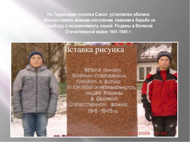 На Территории поселка Сокол установлен обелиск Вечная память воинам-соколянам...