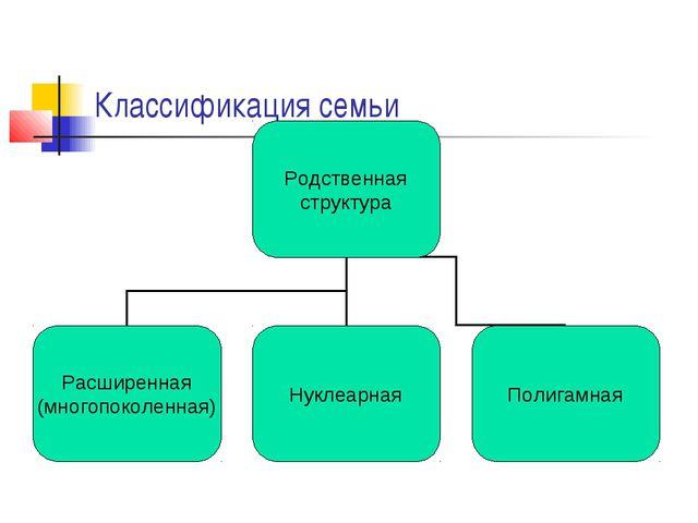 Классификация семьи