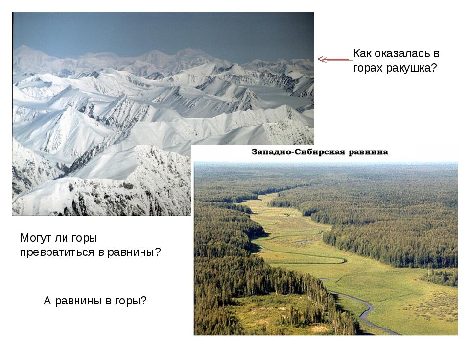 Как оказалась в горах ракушка? Могут ли горы превратиться в равнины? А равнин...