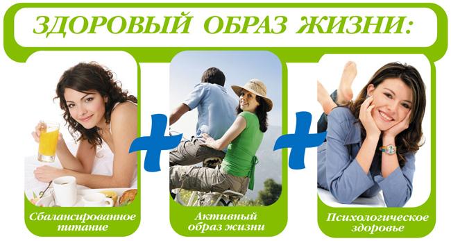 http://www.mechta-hozyaiki.ru/files/editors/Image/buklet-15.jpg